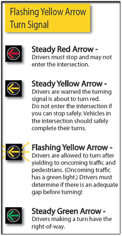 What the Turn Signals Mean