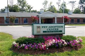 Pet Adoption Center